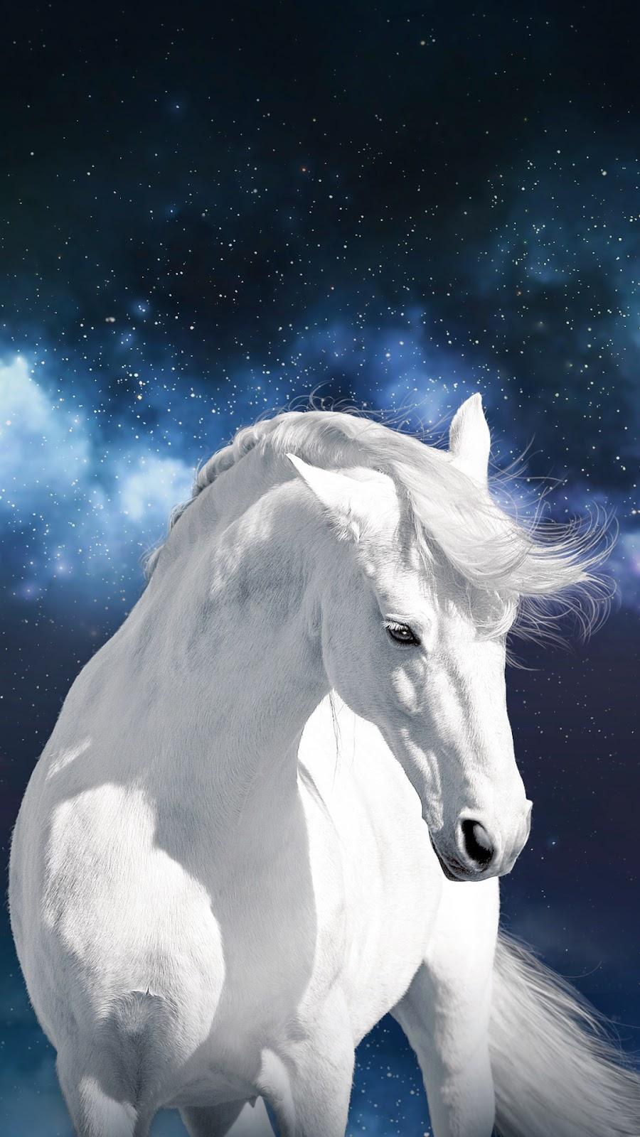 Beautiful Wallpaper Horse Samsung Galaxy - ca460-sky_vega_vn9  HD_80713.jpg